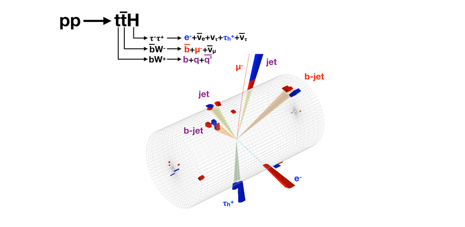 An event candidate for the production of a top quark and top anti-quark pari in conjunction with a Higgs Boson in the CMS detector. The Higgs decays into a tau  lepton and a tau- lepton; the tau  in turn decays into hadrons and the tau- decays in an electron. The decay product symbols are in blue. The top quark decays into three jets (sprays of lighter particles) whose names are given in purple. One of these is initiated by a b-quark. The top anti-quark decays into a muon and b-jet, whose names appear in red.